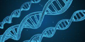 Amino Acids DNA Double Helix