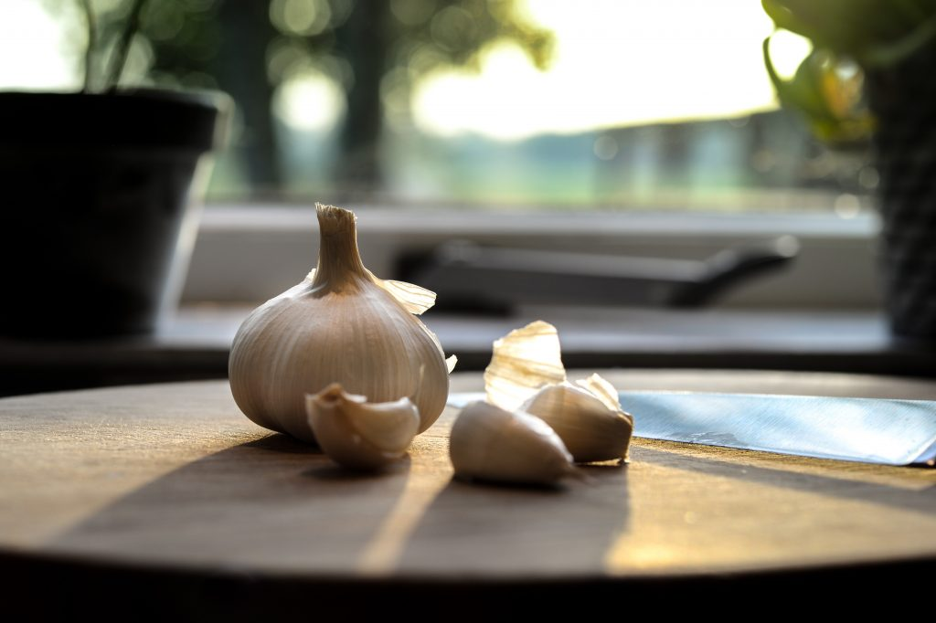 garlic prebiotic foods for a healthier gut
