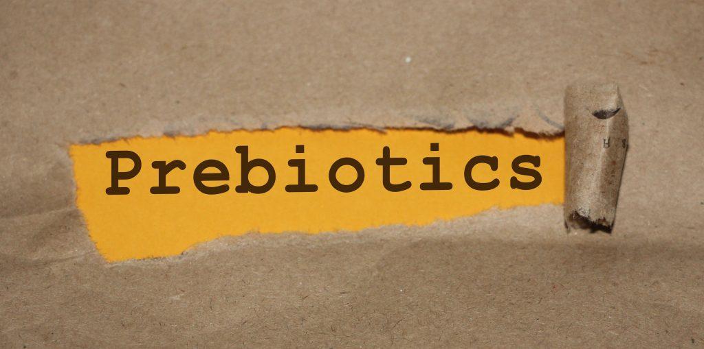 prebiotics restore antibiotics